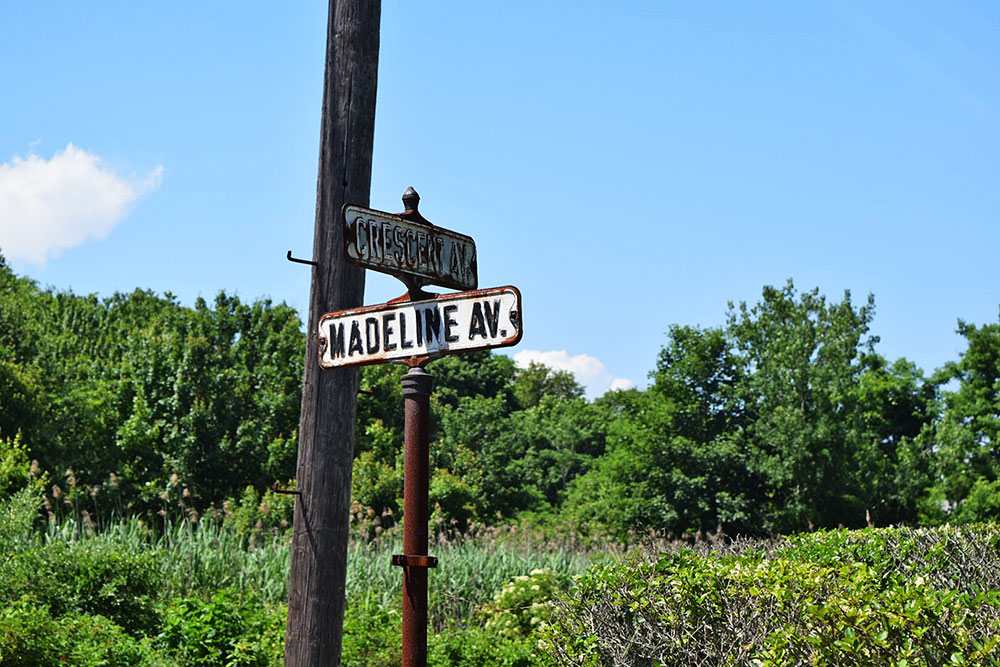 Madeline Ave Lot
